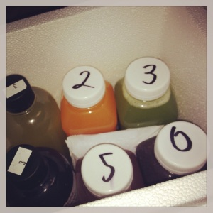3 Day Juice Cleanse-Day 1 (Real Raw Live)